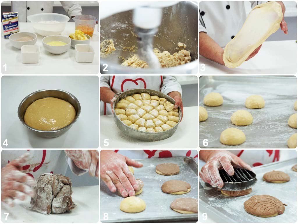 Paso a paso industrias alimenticias aris p gina 5 for Como cocinar conchas finas